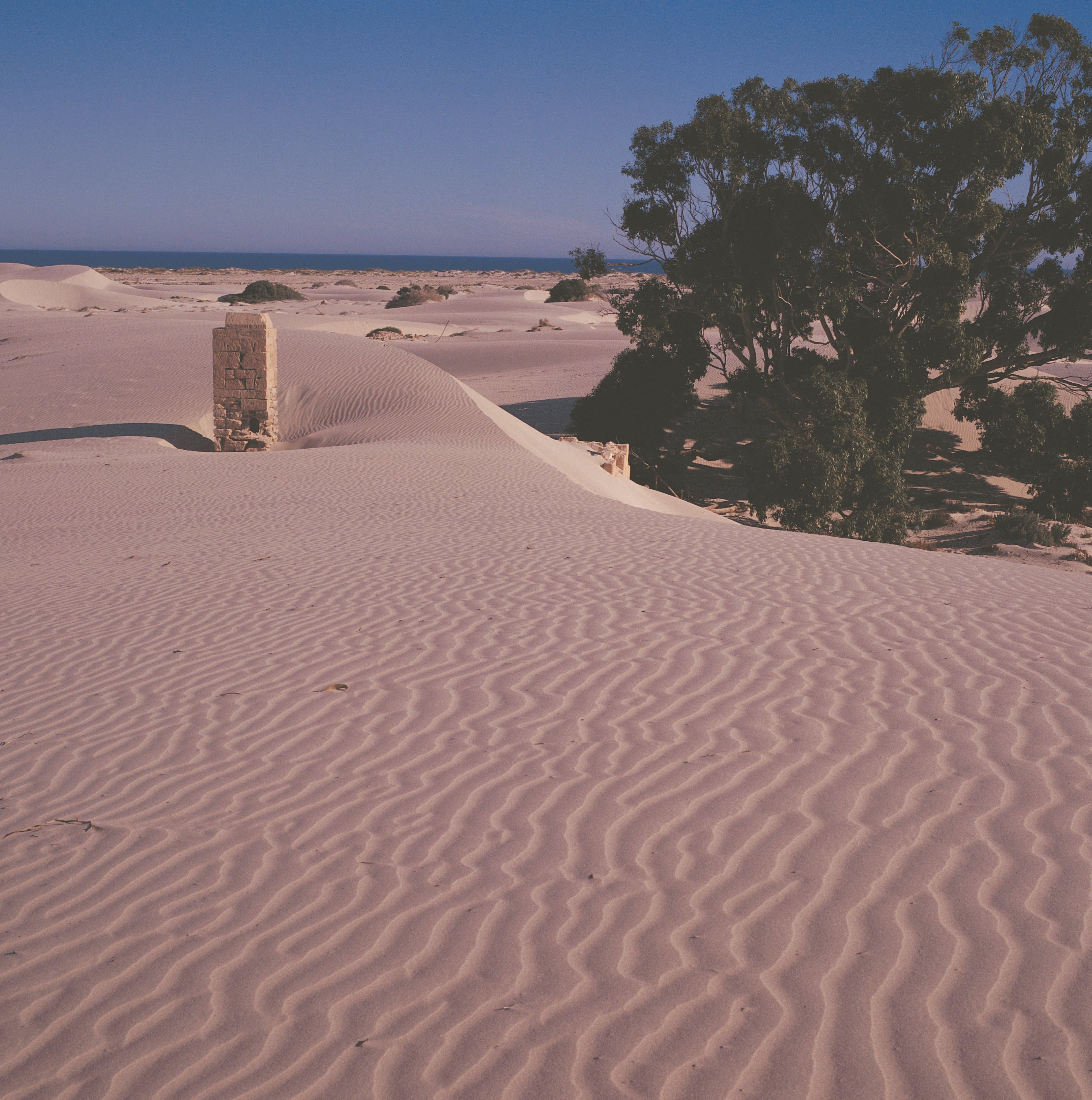 Nullarbor Plain - New South Wales Tourism