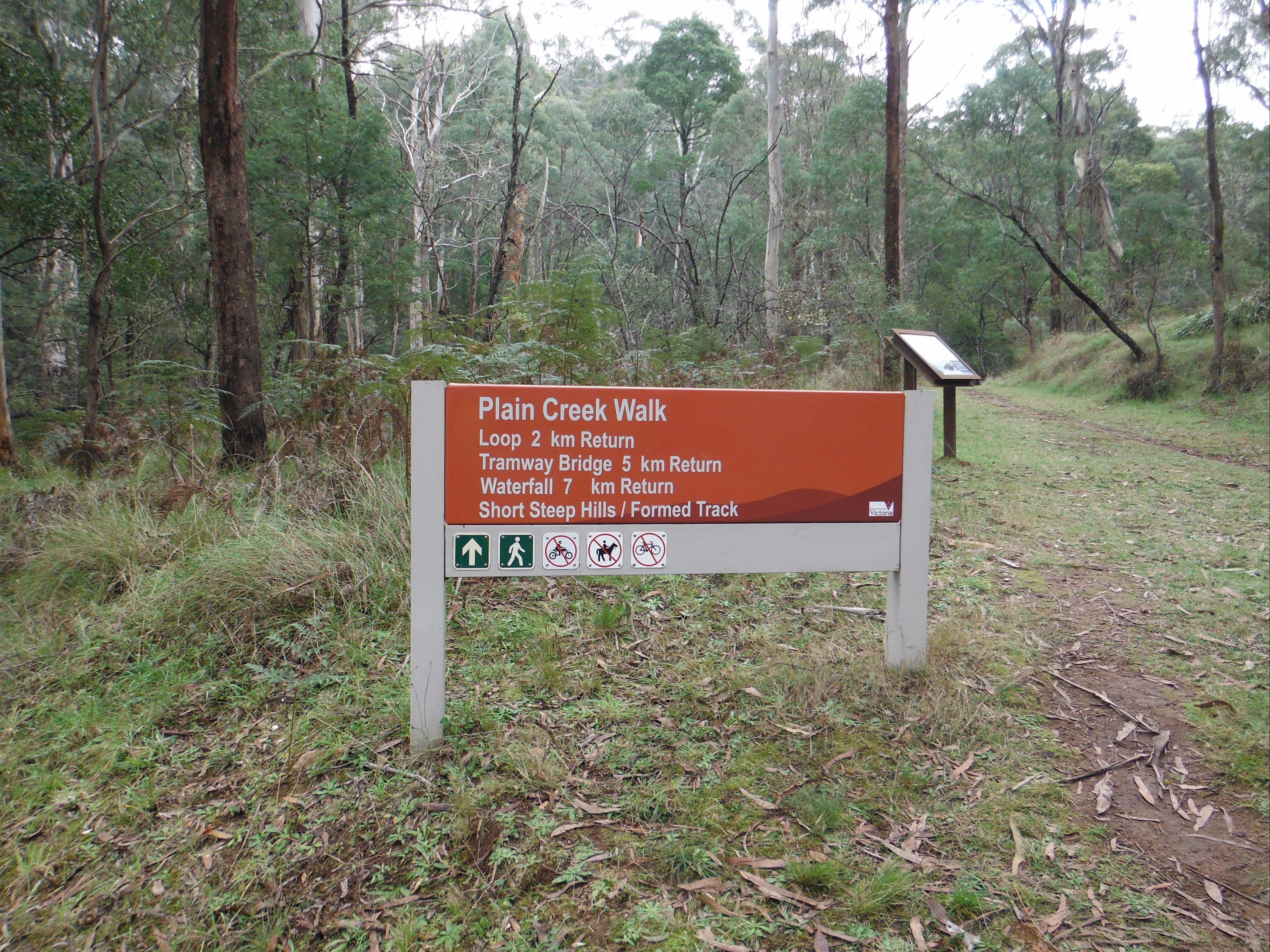 Carter's Mill Picnic and Camping Area - New South Wales Tourism