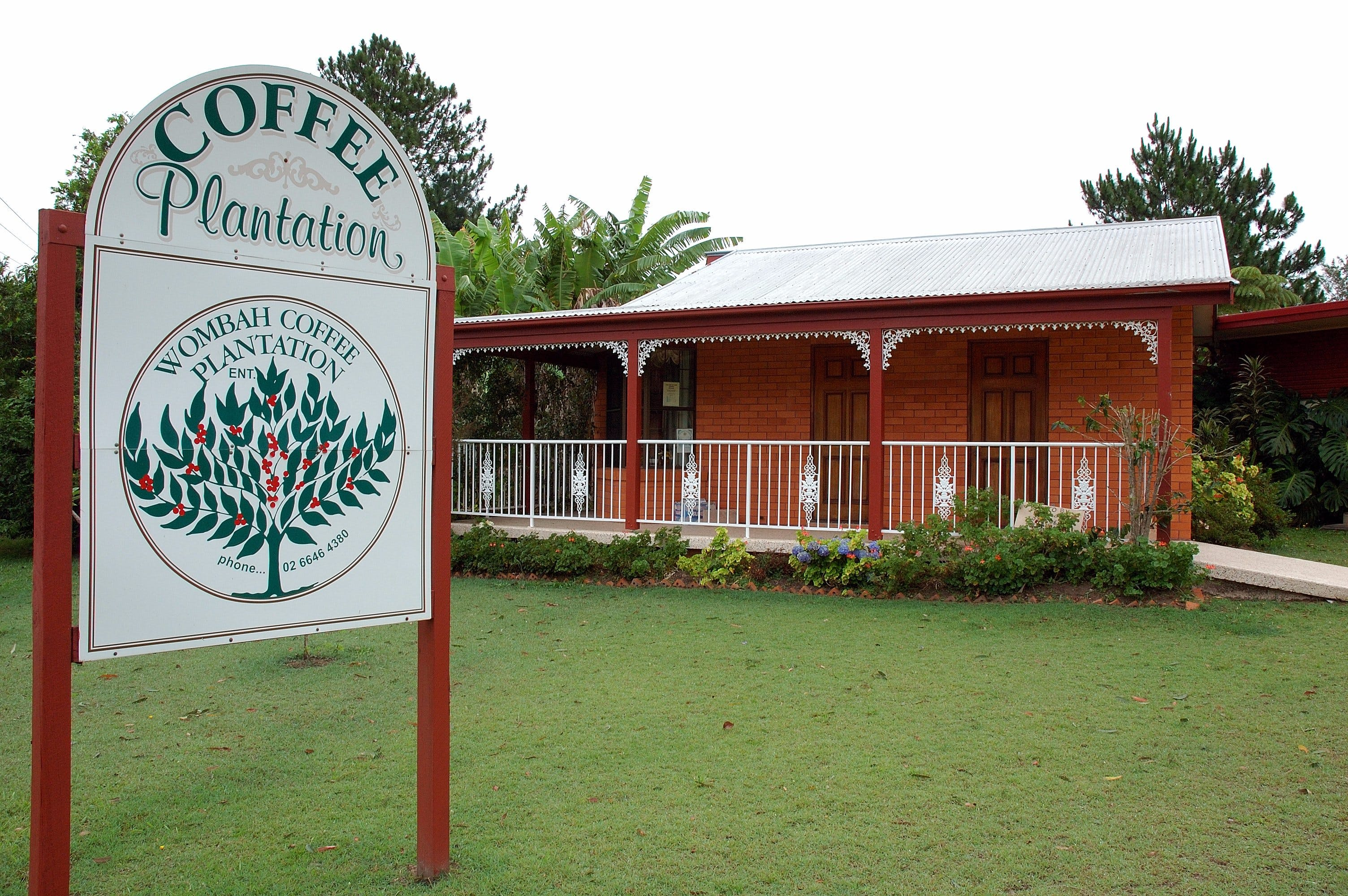 Wombah Coffee Plantation - New South Wales Tourism