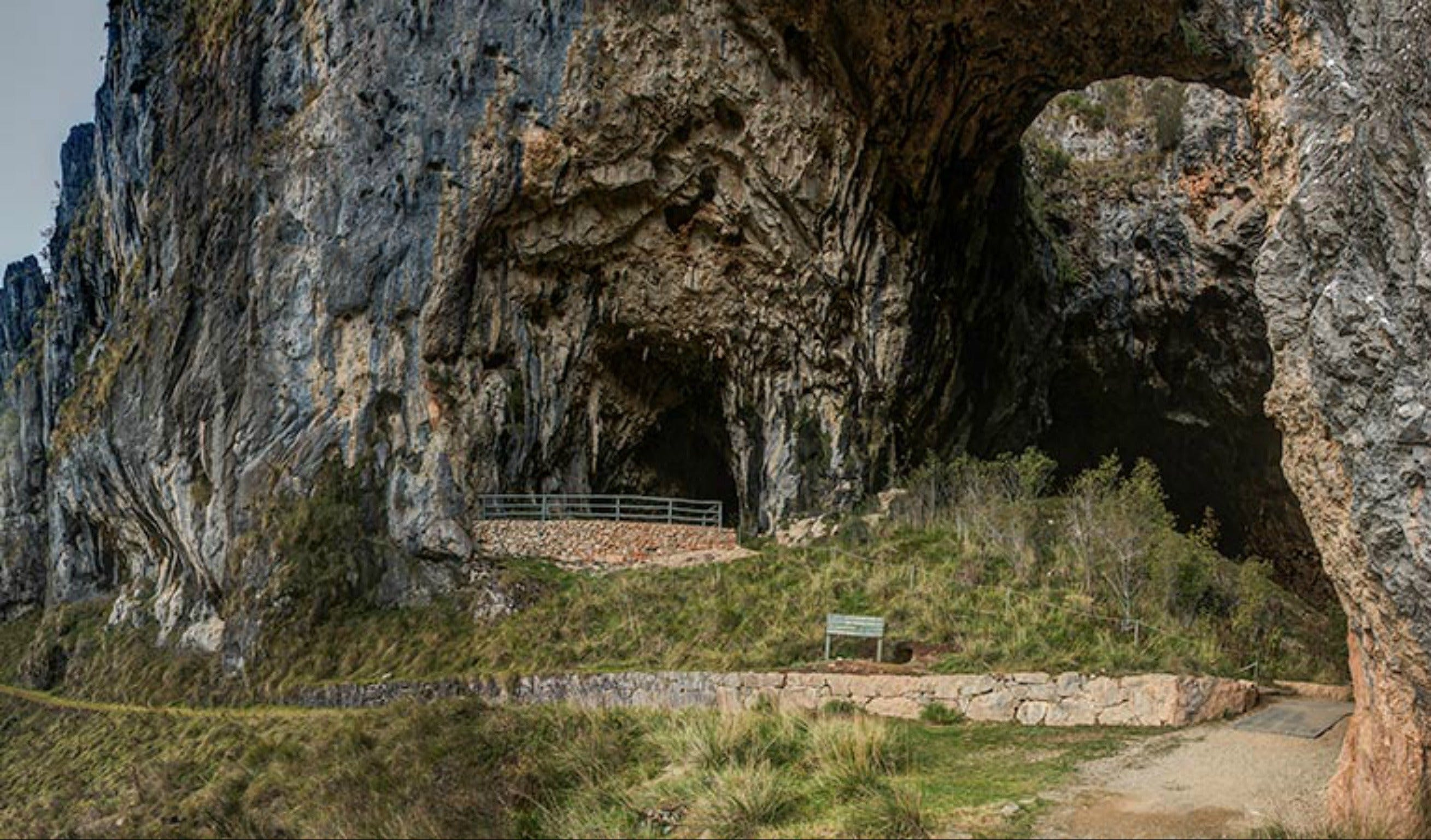 Yarrangobilly Caves  Castle walk - New South Wales Tourism