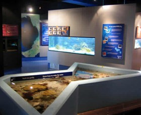 Marine and Freshwater Discovery Centre - New South Wales Tourism