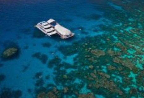 Great Adventures Reef and Green Island Cruises - New South Wales Tourism