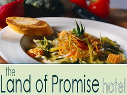 Land of Promise Hotel - New South Wales Tourism