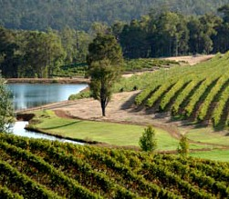 Brookhampton Estate Vineyard - New South Wales Tourism