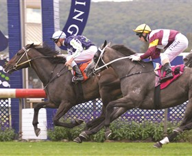 Gosford Race Club - New South Wales Tourism