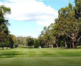 Cooma Golf Club - New South Wales Tourism