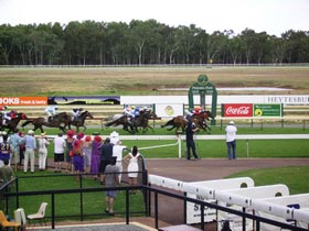 Pinjarra Race Club - New South Wales Tourism