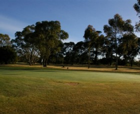 Winchelsea Golf Club - New South Wales Tourism