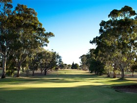 Loxton Golf Club - New South Wales Tourism