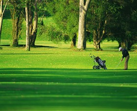 Foster Golf Club - New South Wales Tourism