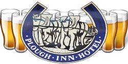 Plough Inn Hotel - New South Wales Tourism