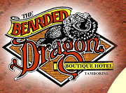 The Bearded Dragon Hotel - New South Wales Tourism
