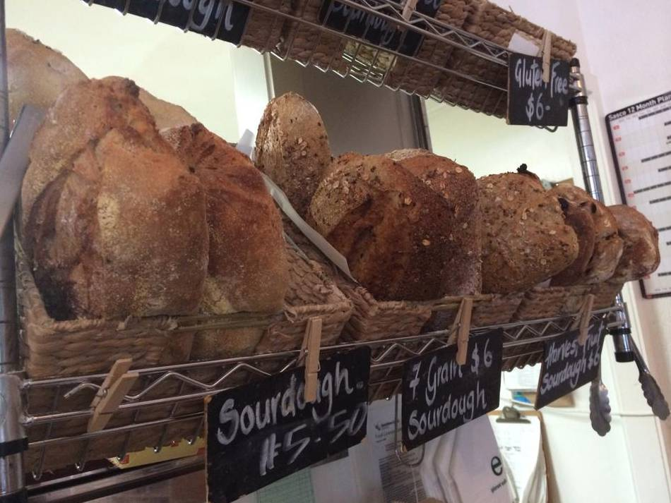 Harvest Breads Cafe - New South Wales Tourism