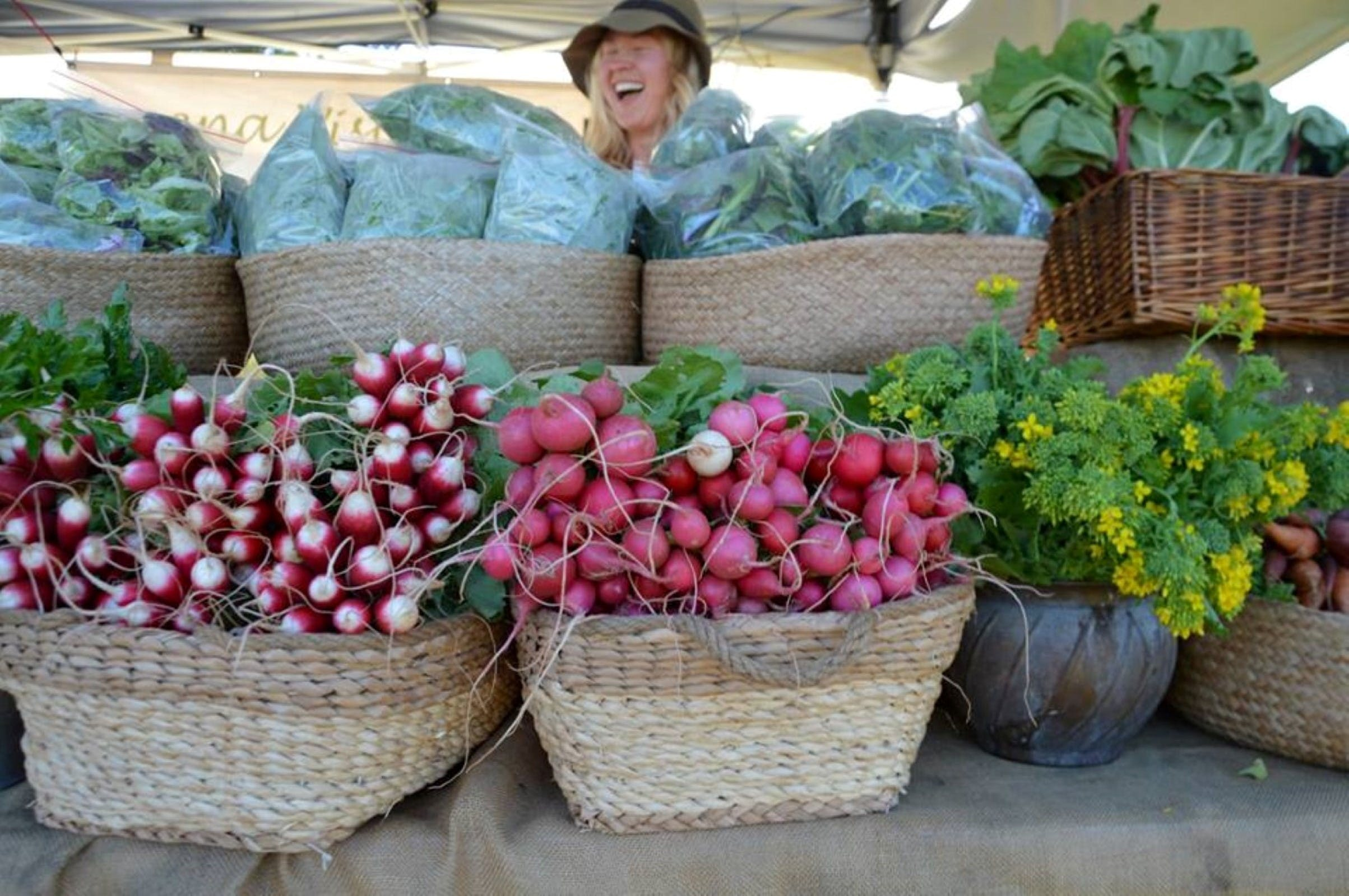 Berry Farmers' Market - New South Wales Tourism