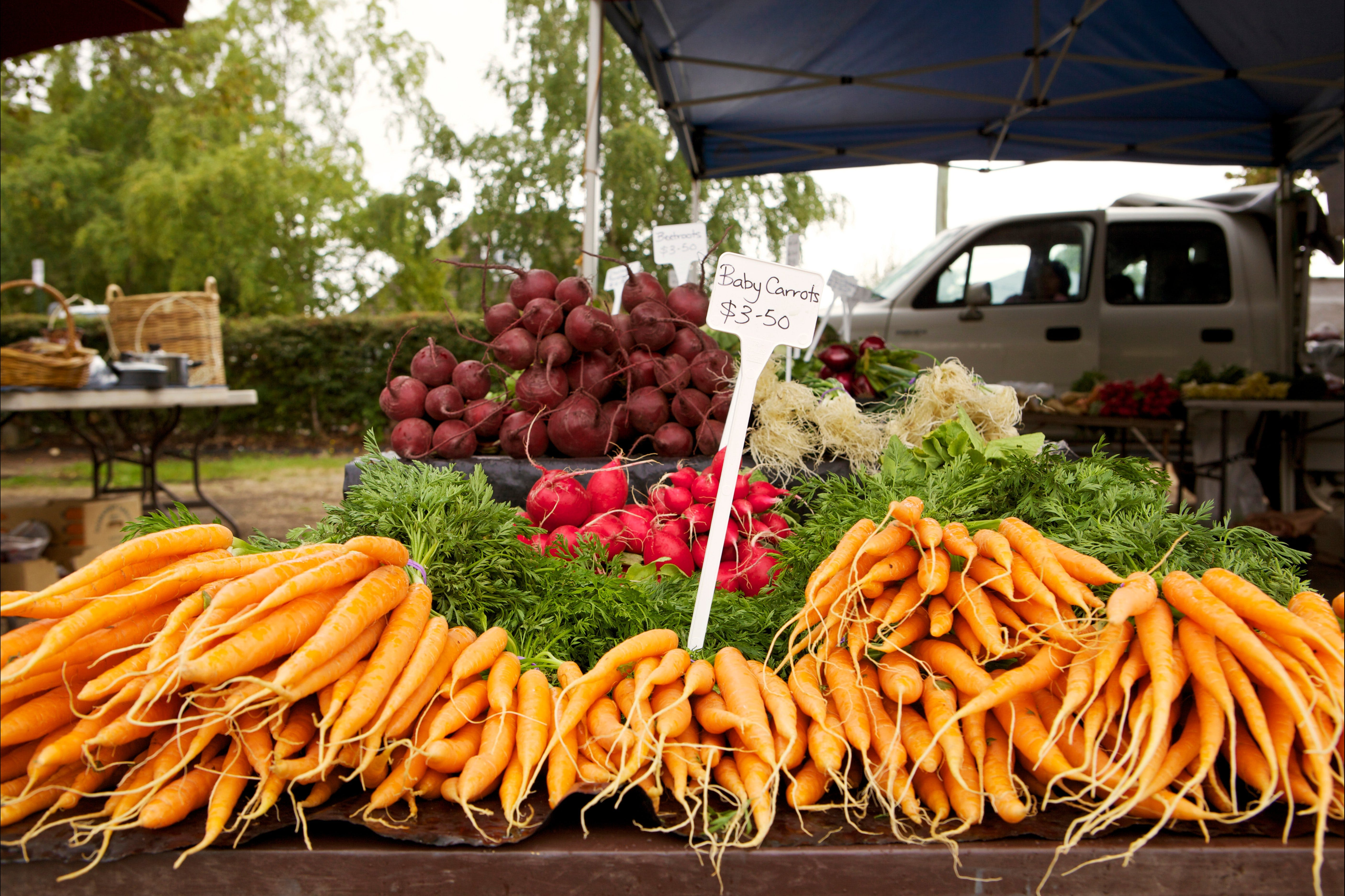 Evandale Market - Weekly - New South Wales Tourism