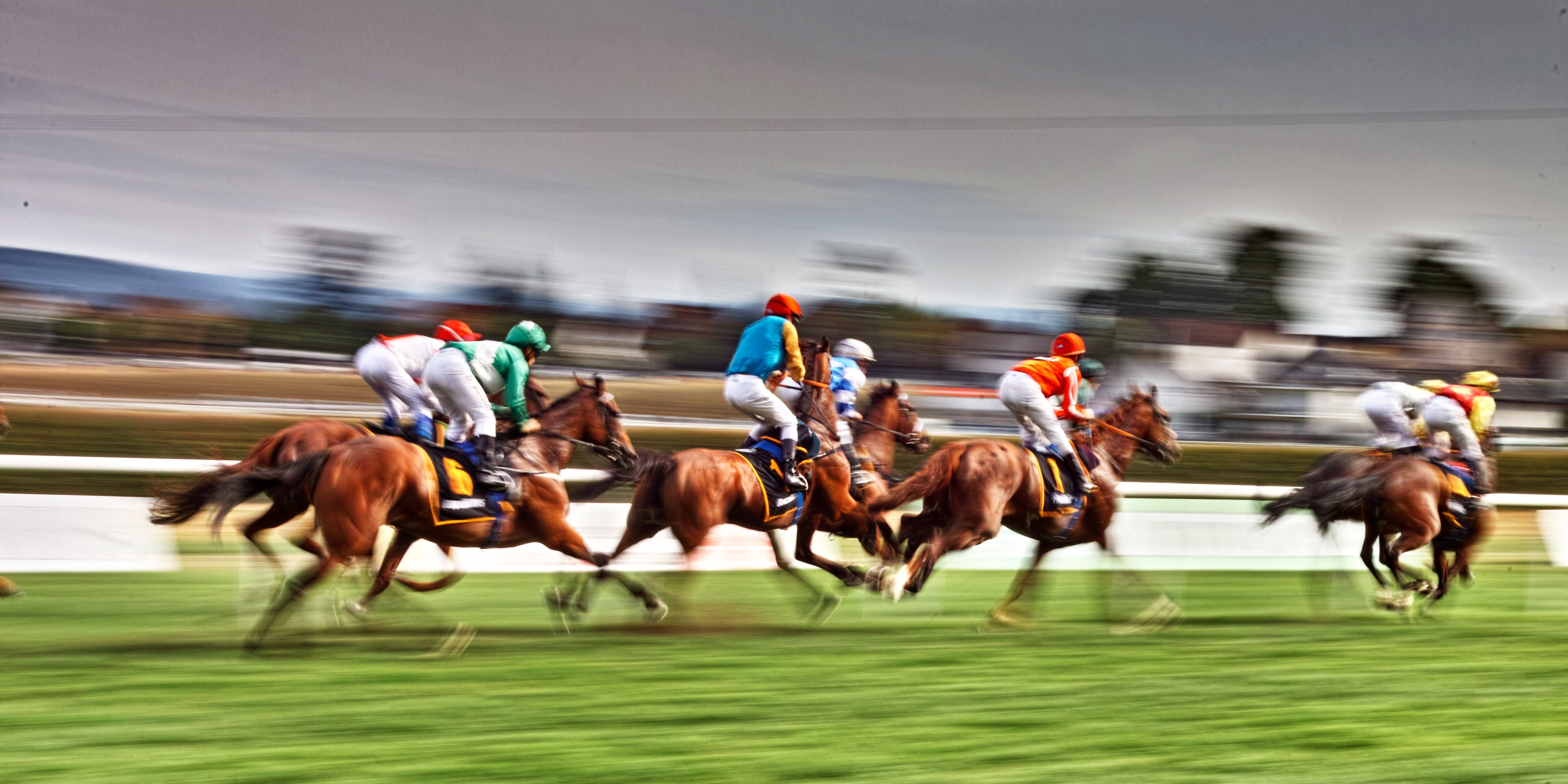 Grafton July Racing Carnival - New South Wales Tourism