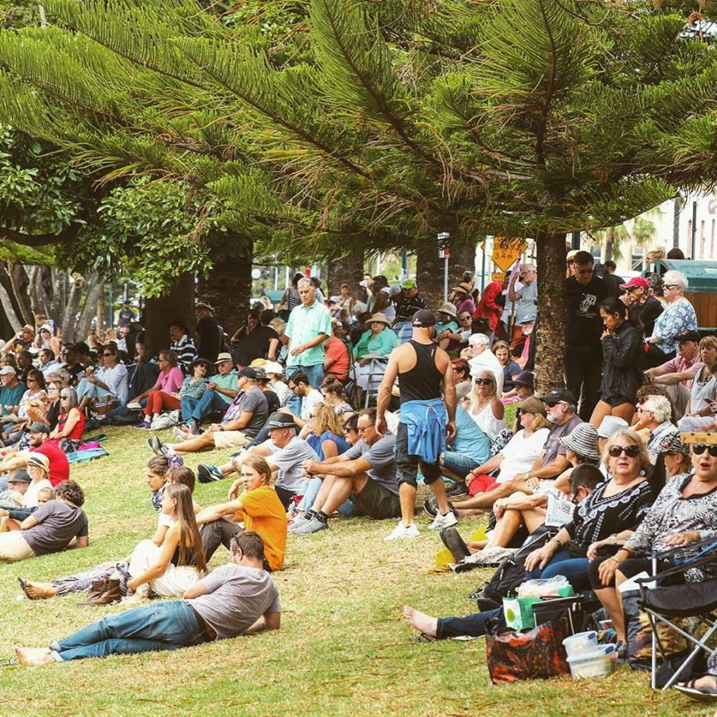 Music in the Park - New South Wales Tourism
