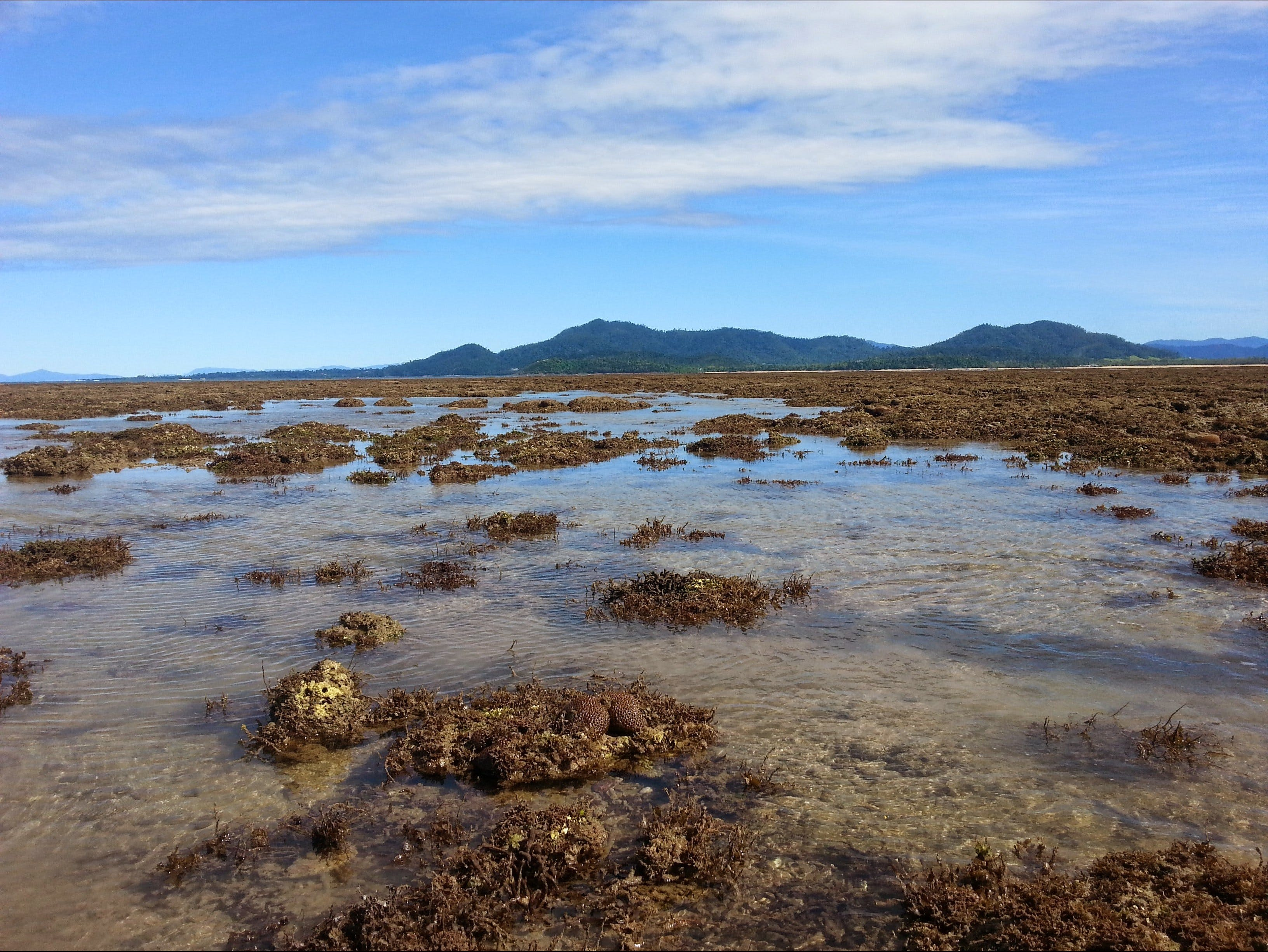 Walk to the Reef - New South Wales Tourism