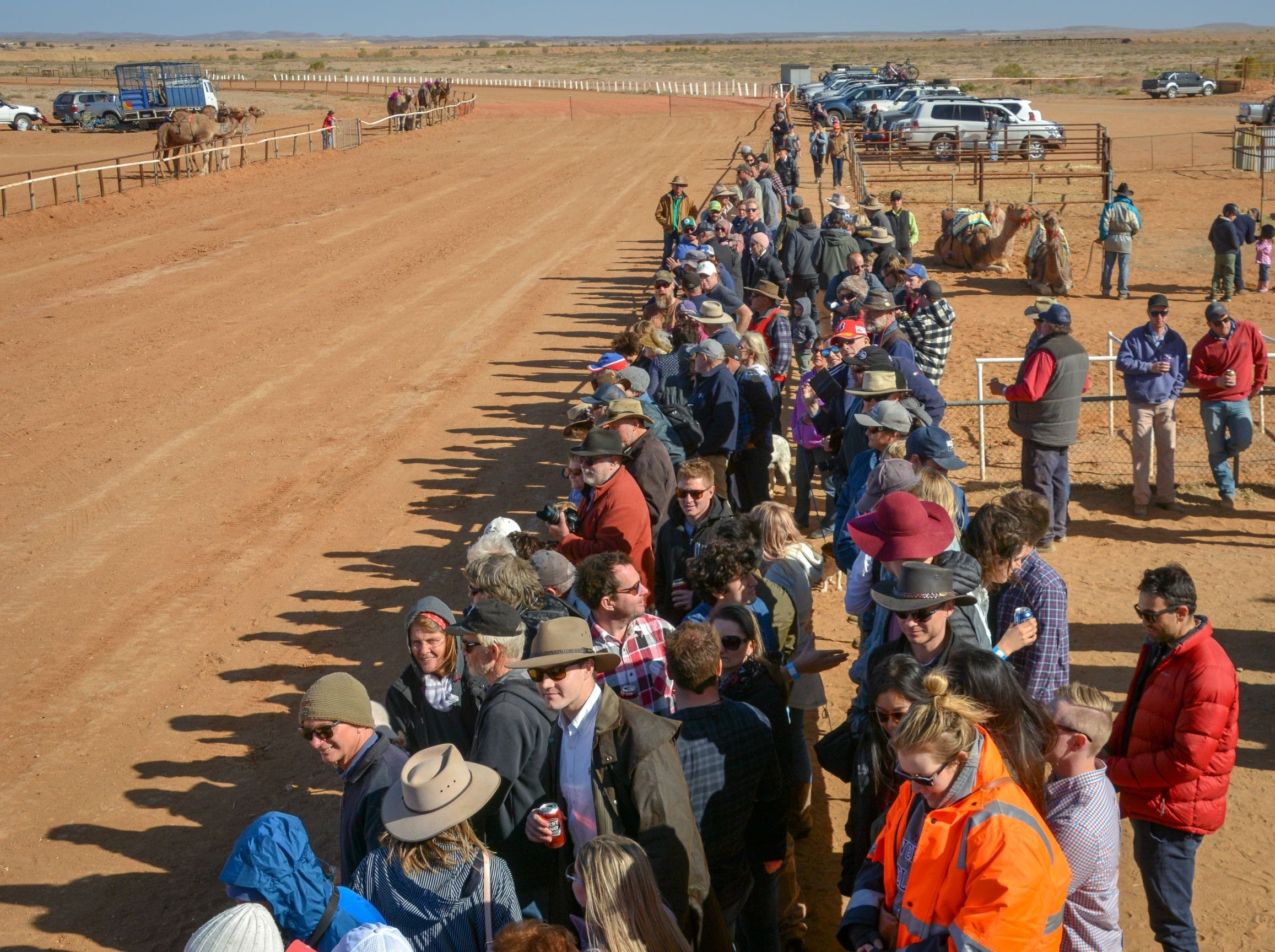 28th Marree Australasian CAMEL CUP 3 July 2021 - New South Wales Tourism