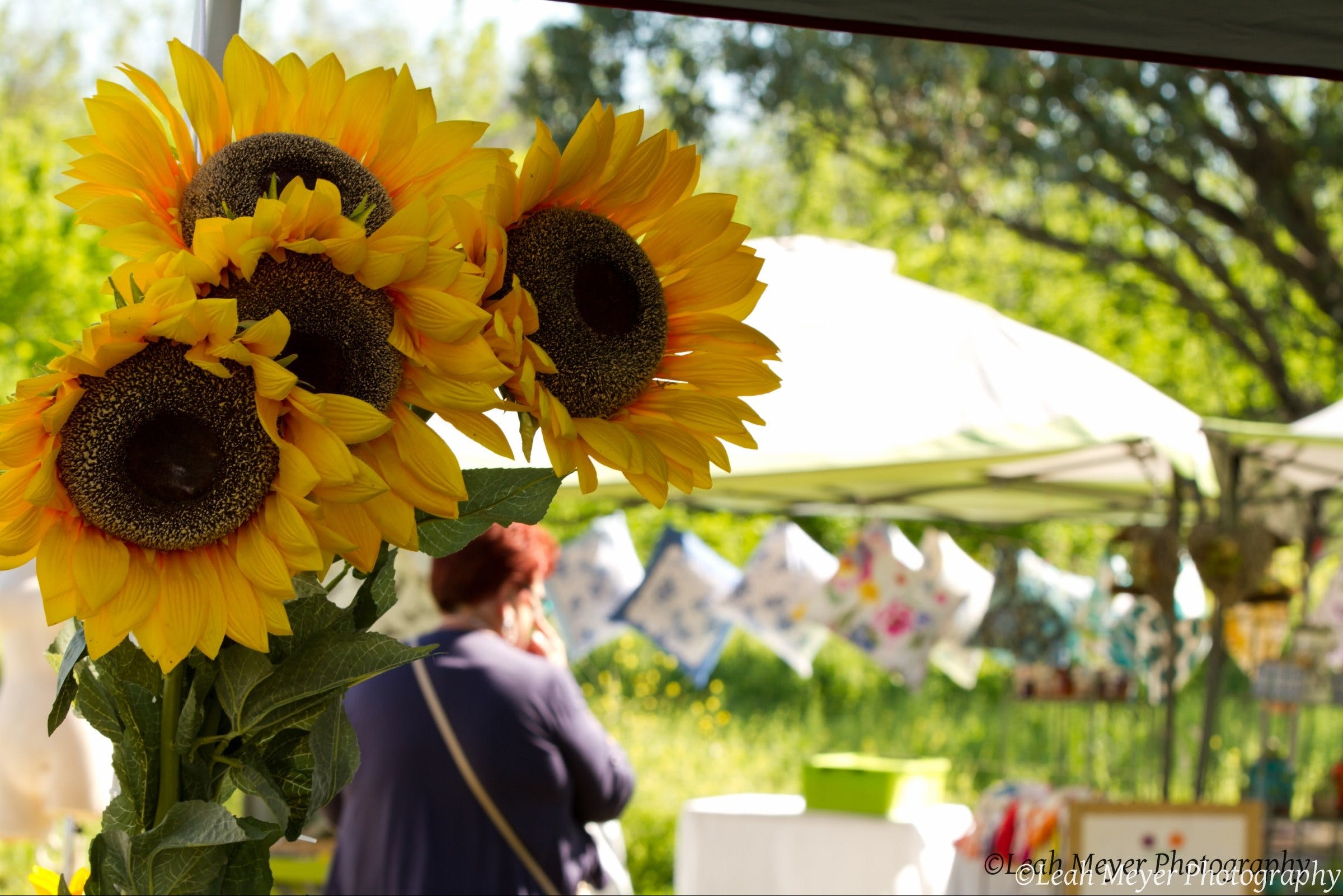 Blackville Arts and Market Day - New South Wales Tourism