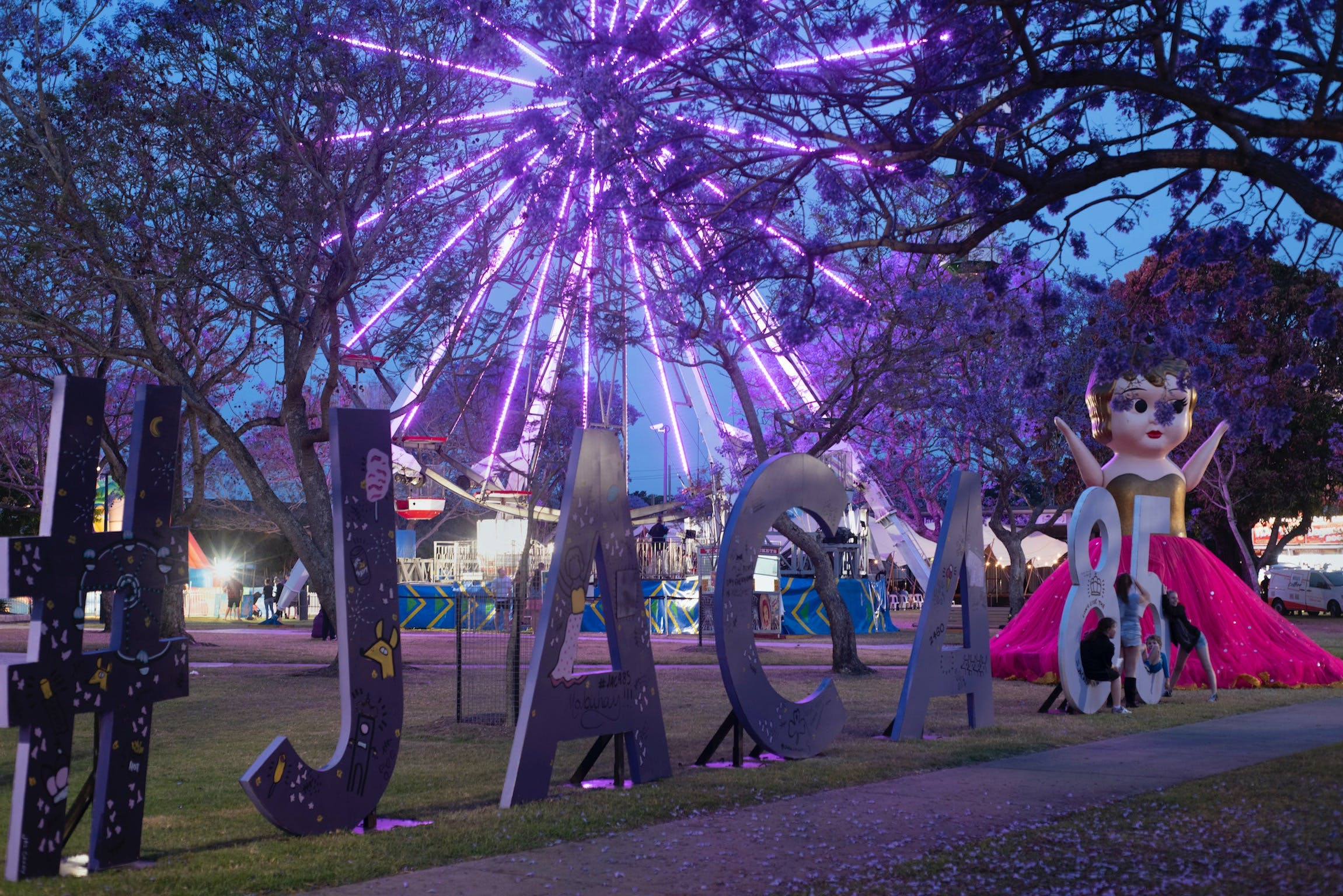 Grafton Jacaranda Festival - New South Wales Tourism