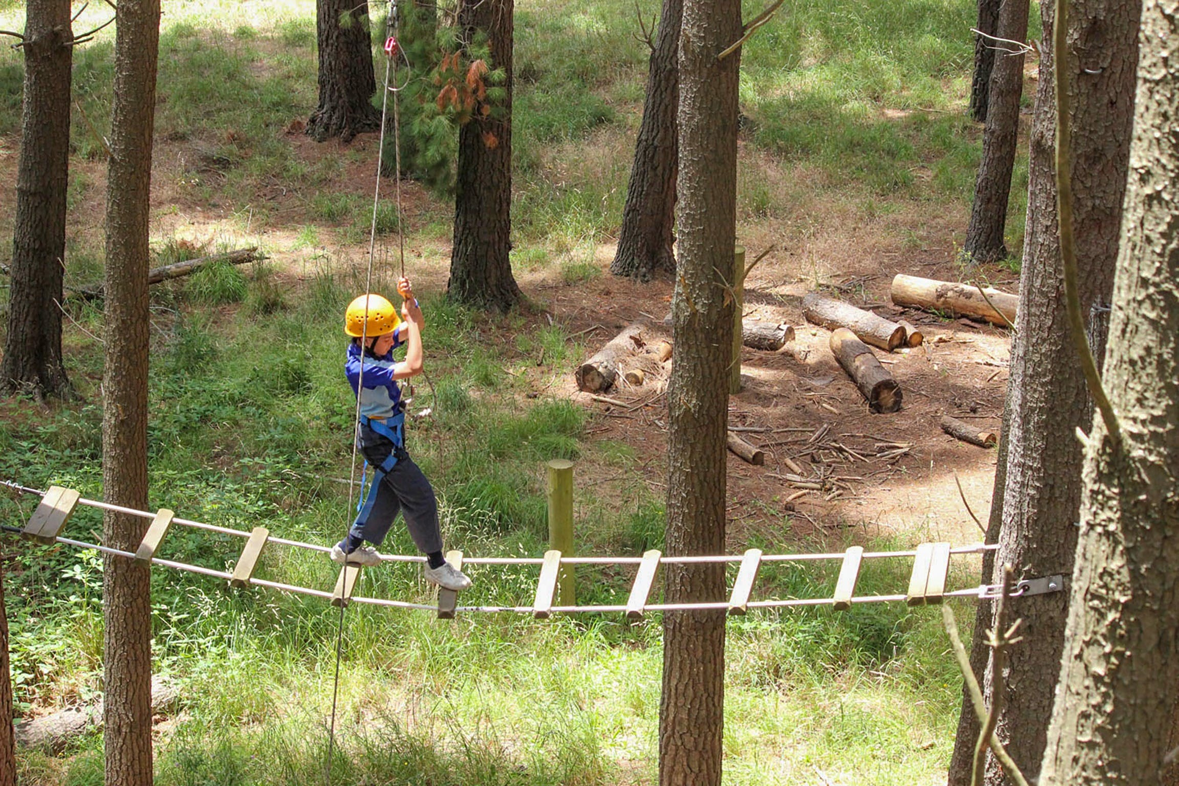 July 2020 Holidays- Go Wild at the Mt Lofty Adventure Hub - New South Wales Tourism