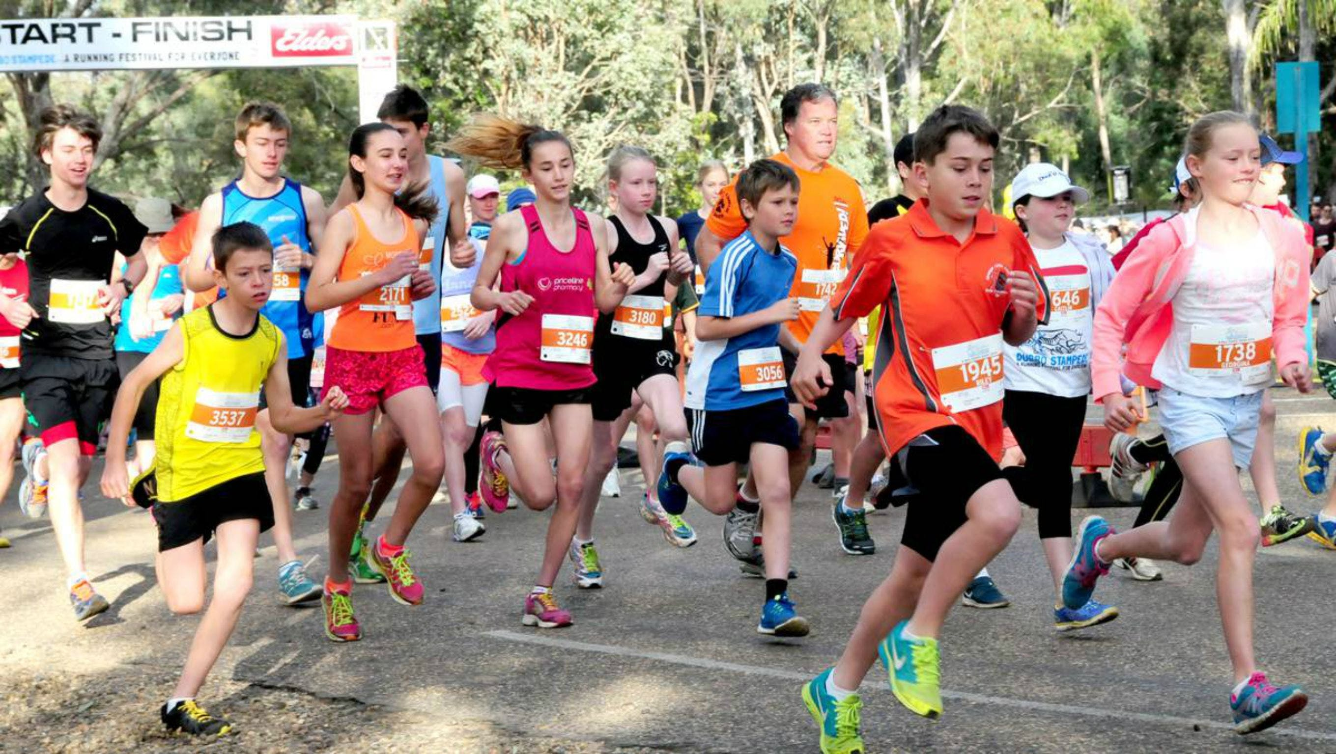 MAAS Group Dubbo Stampede Running Festival - New South Wales Tourism