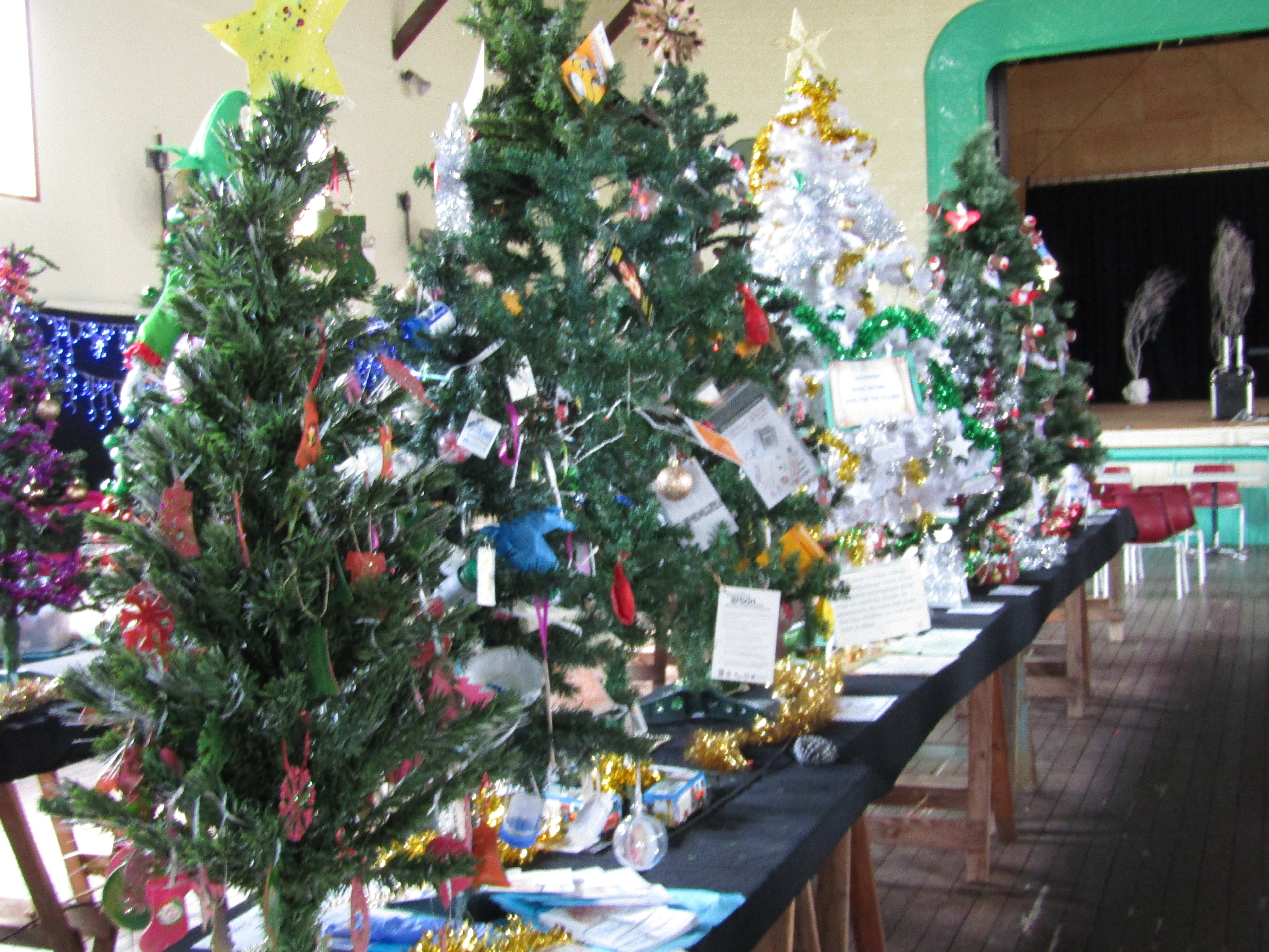 Mount Morgan Christmas Tree Festival - New South Wales Tourism