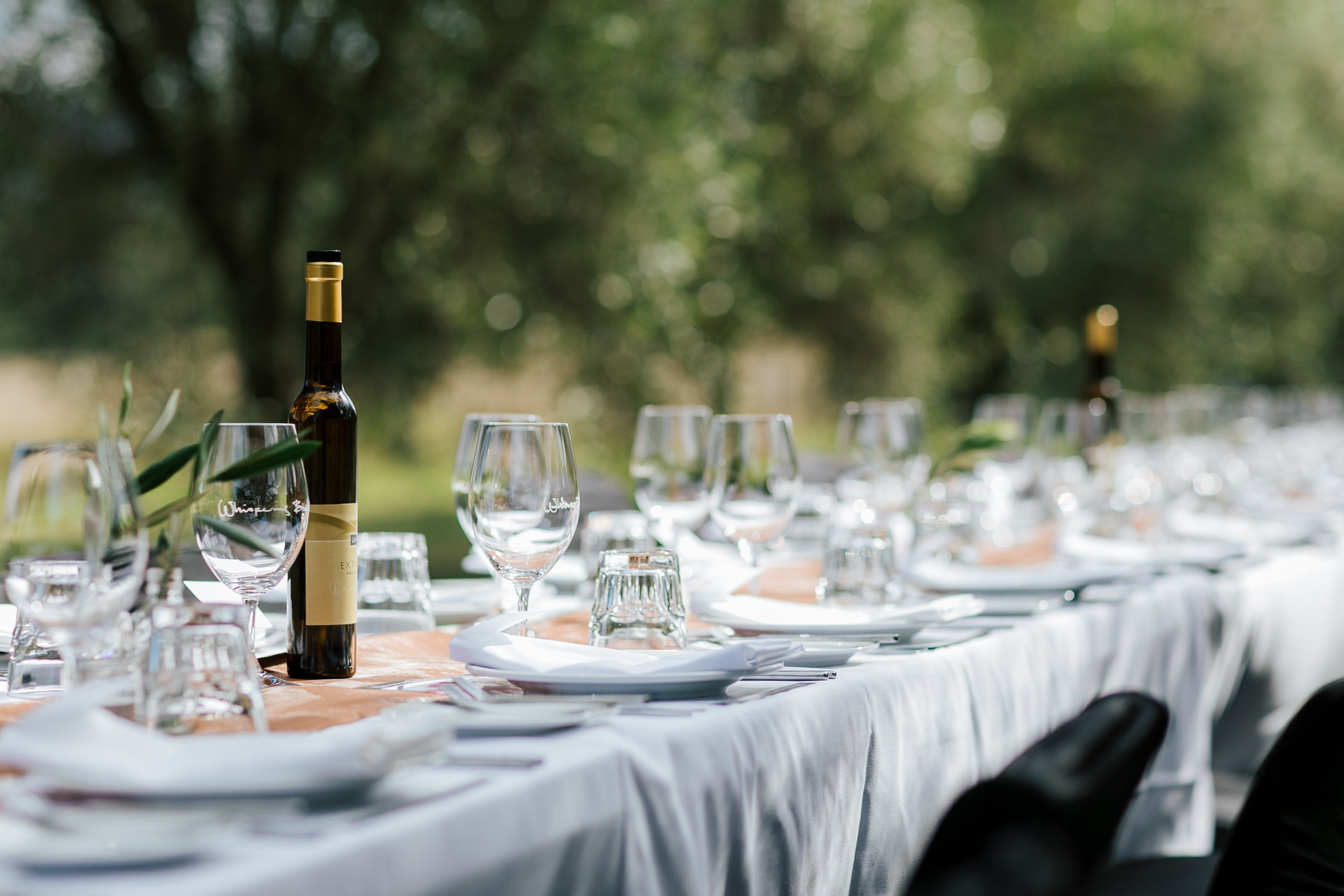 Whispering Brook Olive Long Table Luncheon - New South Wales Tourism