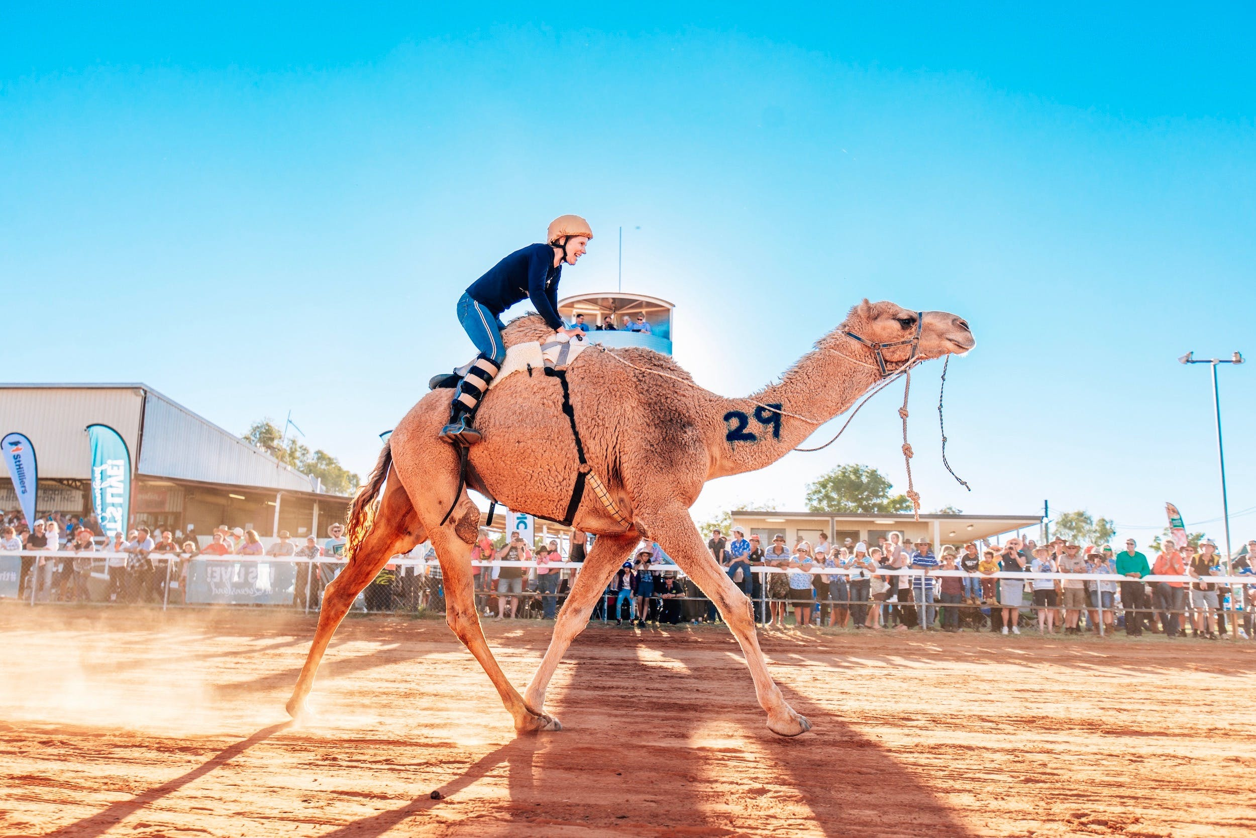 Boulia Camel Races - New South Wales Tourism
