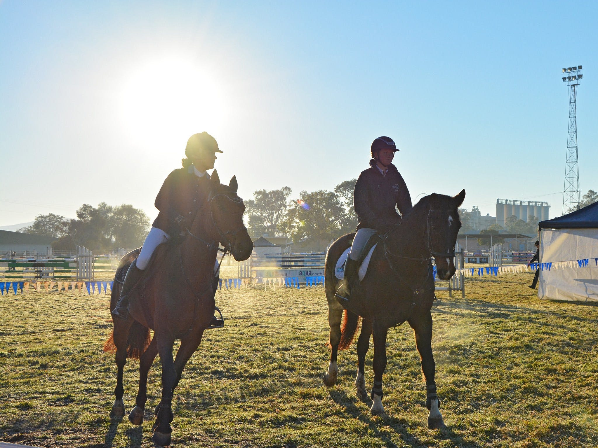 Gunnedah Showjumping Festival - New South Wales Tourism