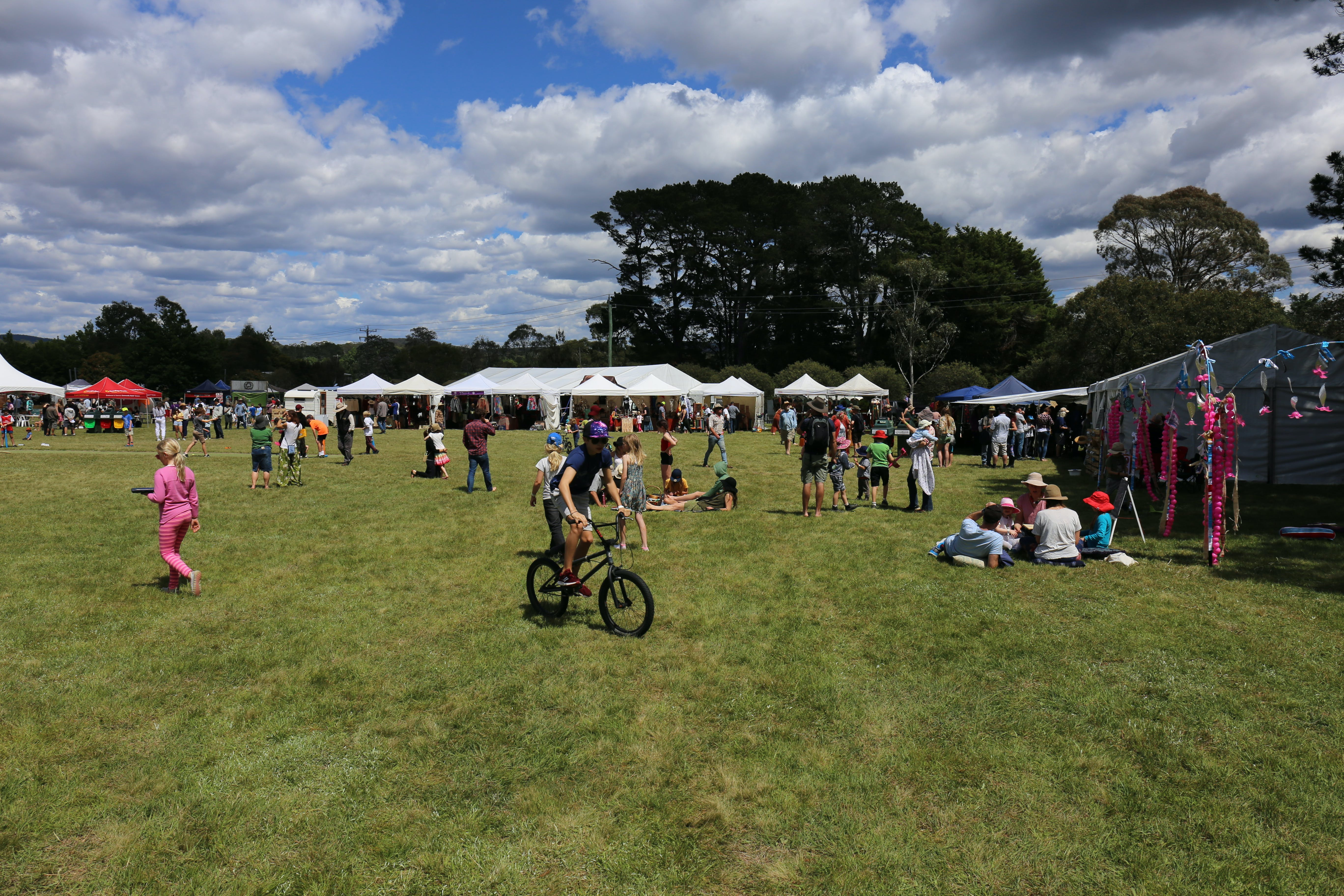 Majors Creek Festival - New South Wales Tourism