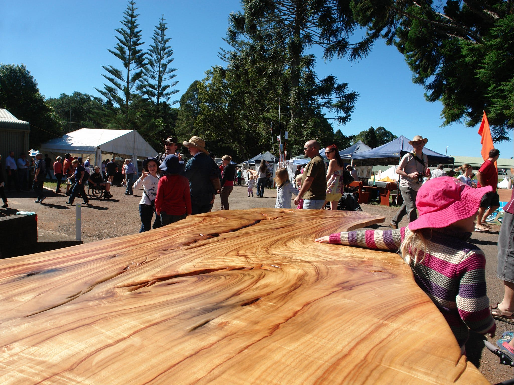 Maleny Wood Expo From Seed to Fine Furniture - New South Wales Tourism