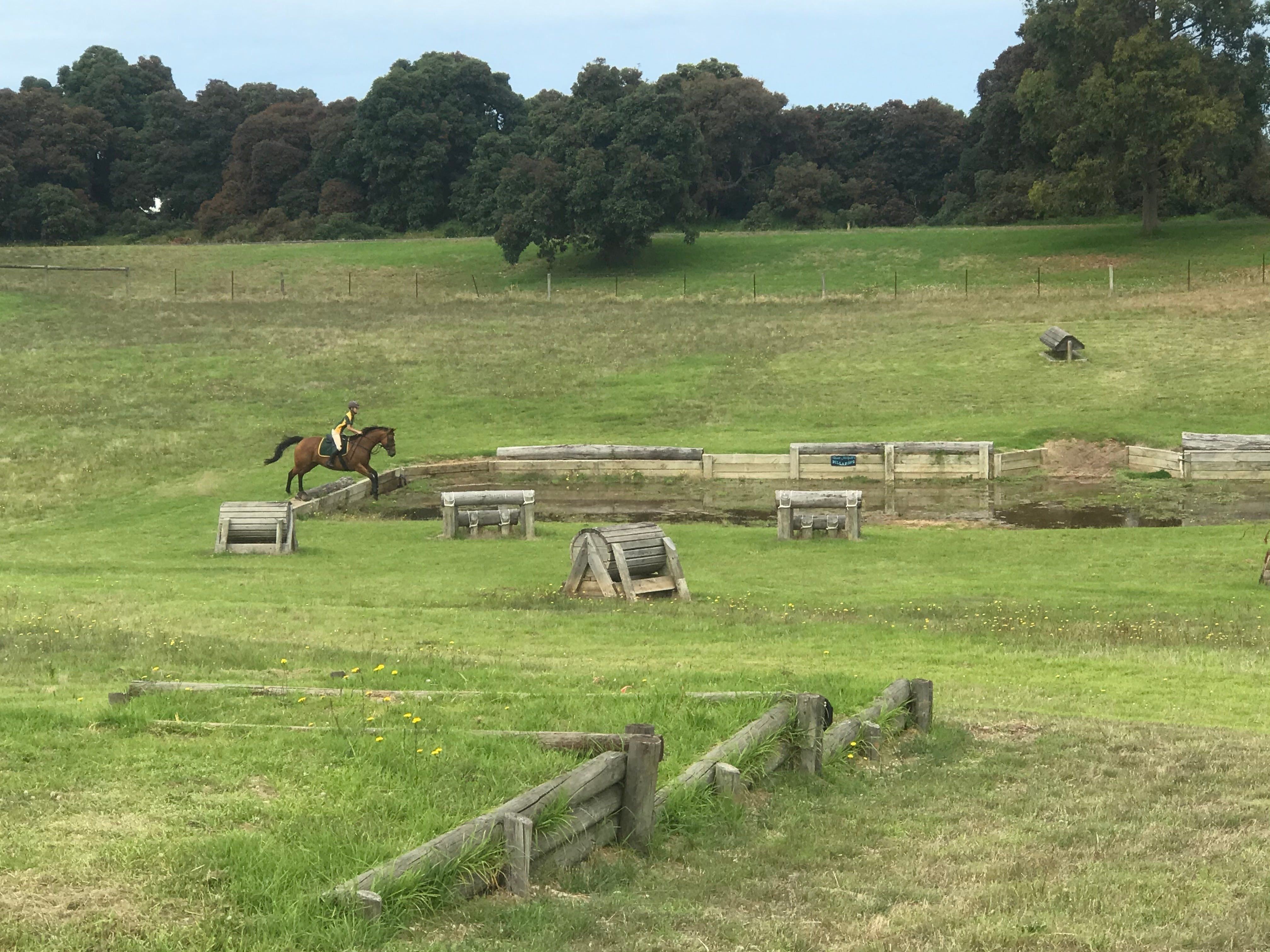 Mount Gambier and District Pony Club Horse Trials 2020 - New South Wales Tourism