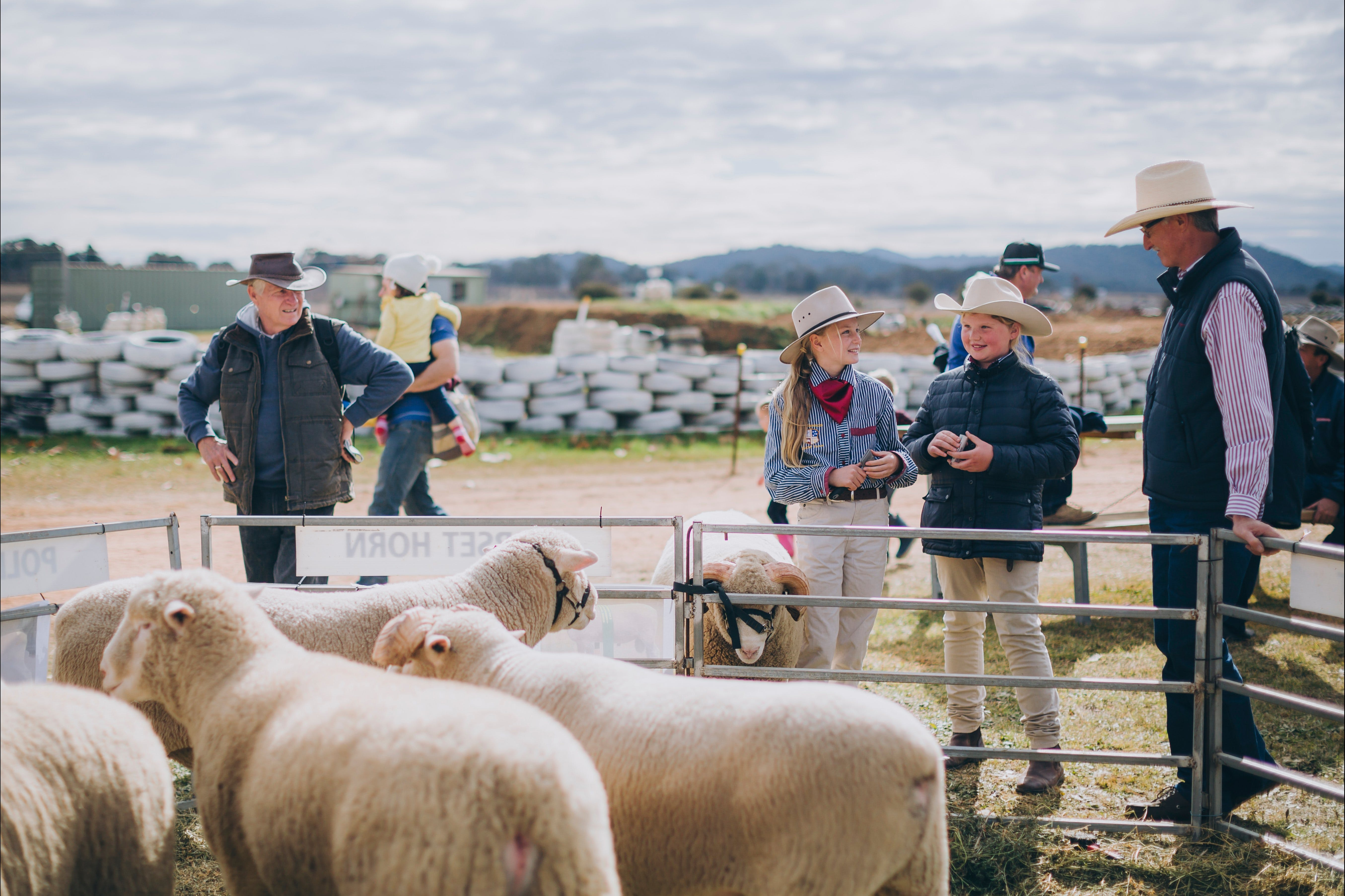 Mudgee Small Farm Field Days - New South Wales Tourism