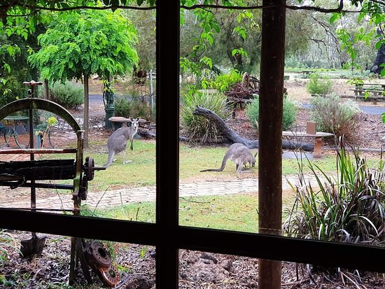 The Wander Inn - New South Wales Tourism
