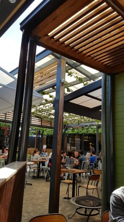 The Shed Cafe - Hurstville - New South Wales Tourism