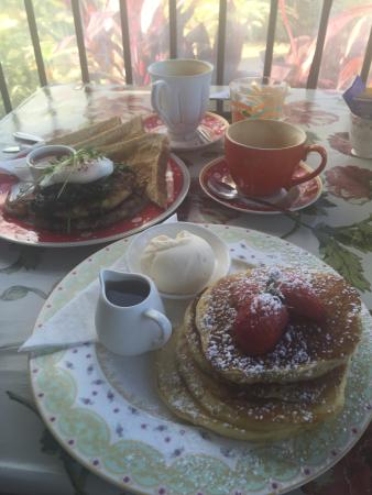 The Garden Tea House - New South Wales Tourism