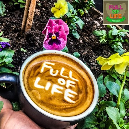 Full of Life Organics - New South Wales Tourism