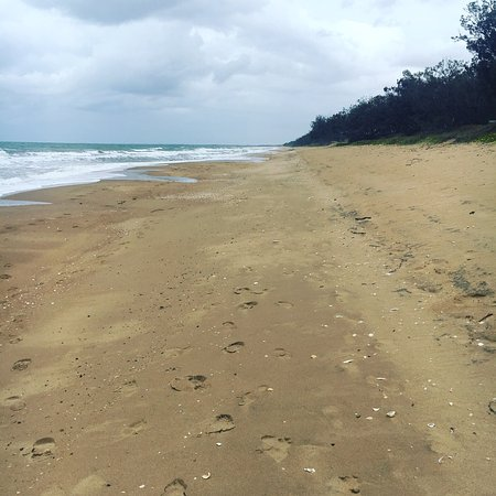 Moore Park Beach Queensland - New South Wales Tourism