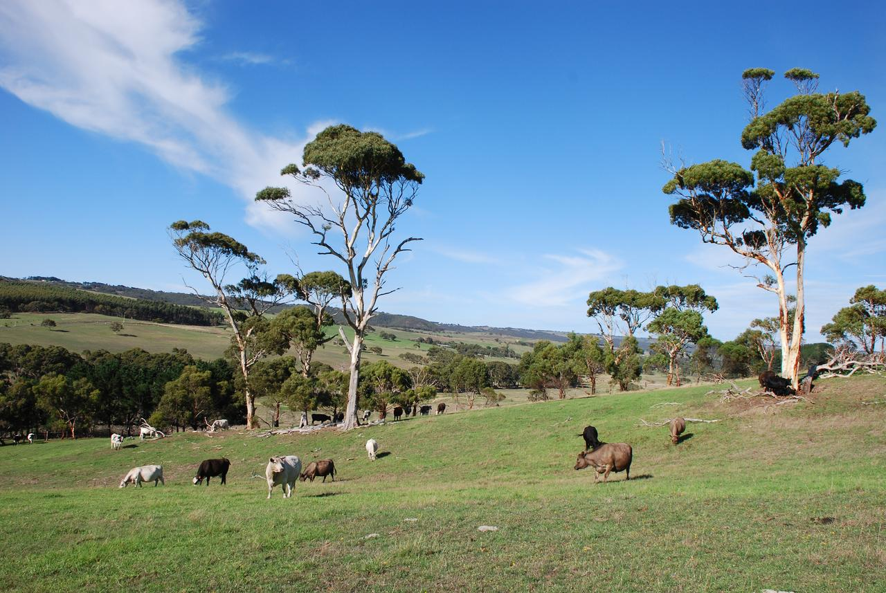 Lisieux Farm Bed and Breakfast - New South Wales Tourism