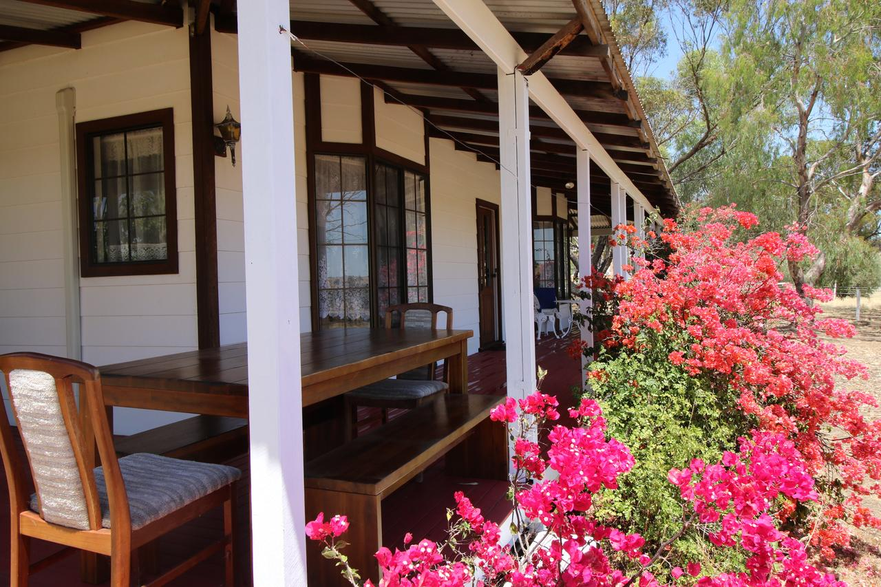 Daisy Cottage - New South Wales Tourism